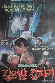 Suddenly in Dark Night (1981)