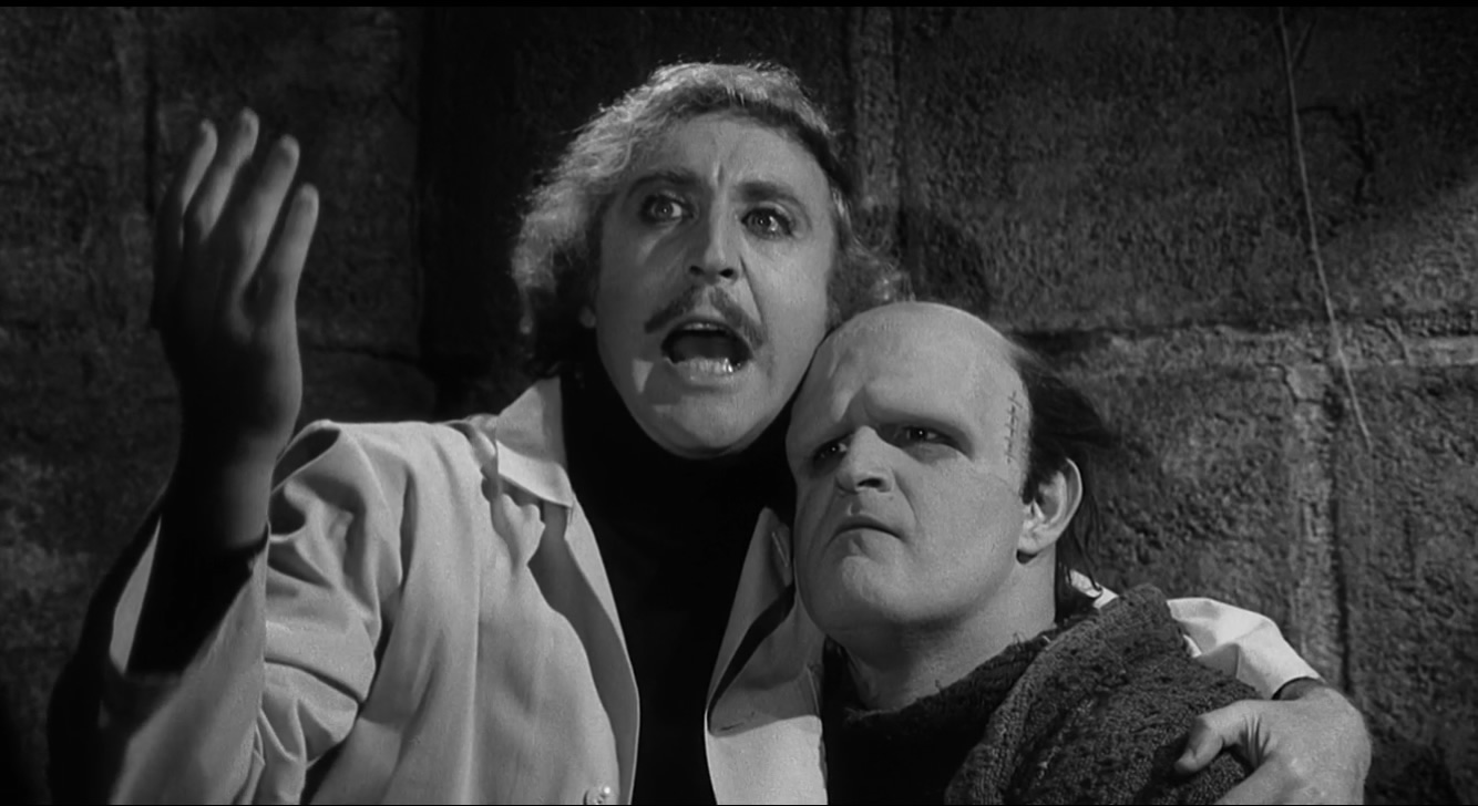 satire of young frankenstein Young frankenstein (1974): director mel brooks' broad farce following the mishaps of gene wilder's dr frederick frankenstein (that's pronounced fronk-en-steen, by the way) is the whole package for weinberg: a hilariously contemporary film with an old-fashioned black-and-white style that's even funny for kids.